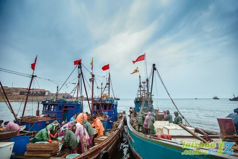 26(阴历八月十四)三山岛码头一起去买海鲜